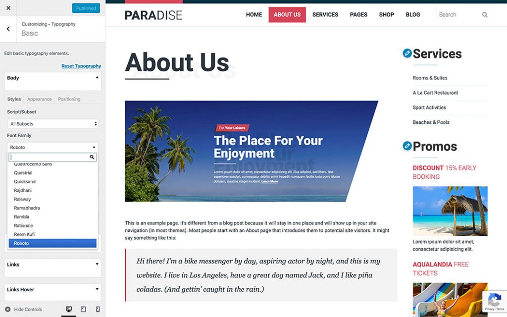 WordPress Customizer in Paradise theme