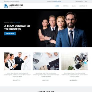 wordpress theme for business websites