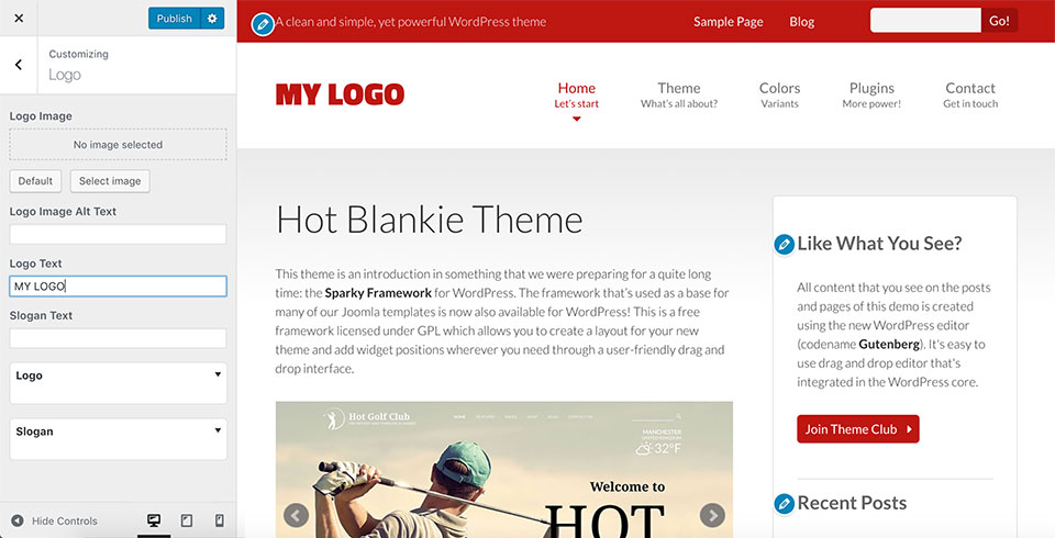 WordPress Customizer in Blankie theme