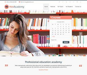 academy wordpress theme