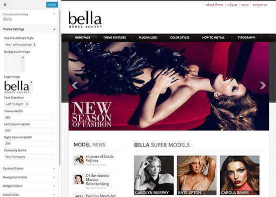 Model Agency supports theme customizer