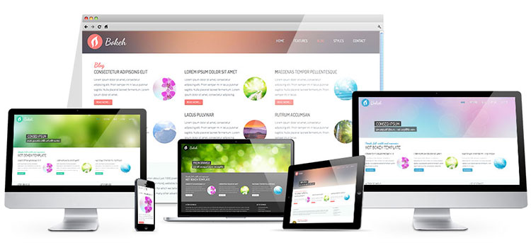 Responsive full screen WordPress theme