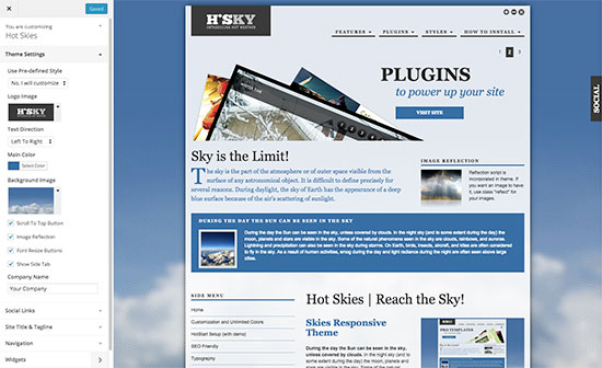 Skies supports WordPress customizer