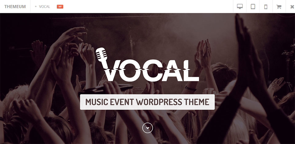 vocal wordpress music theme