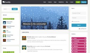 buddy community wordpress theme