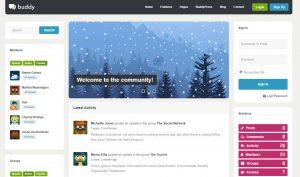 buddy community wordpress theme