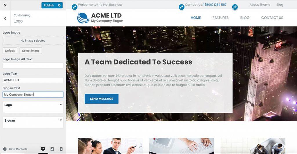 WordPress Customizer in Business theme