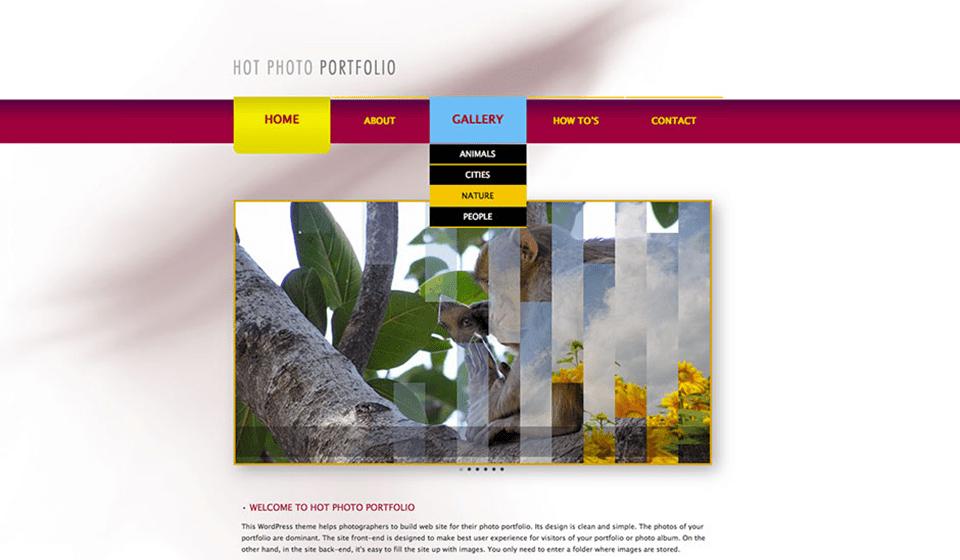 wp_photo_portfolio6